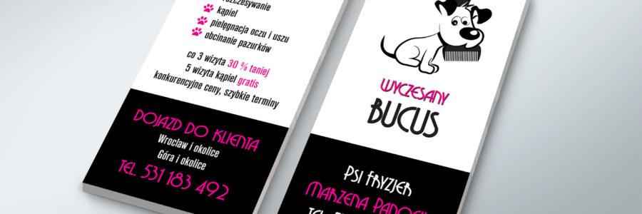Logo i Ulotki Wyczesany Bucuś
