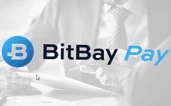 BitBay Pay – banery statyczne oraz animowane
